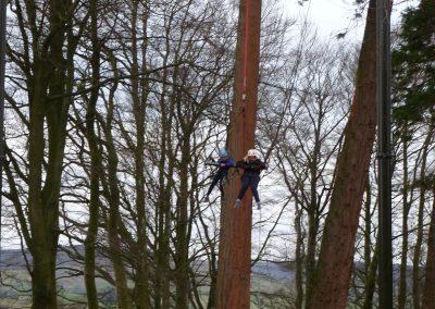 Giant Swing (15)